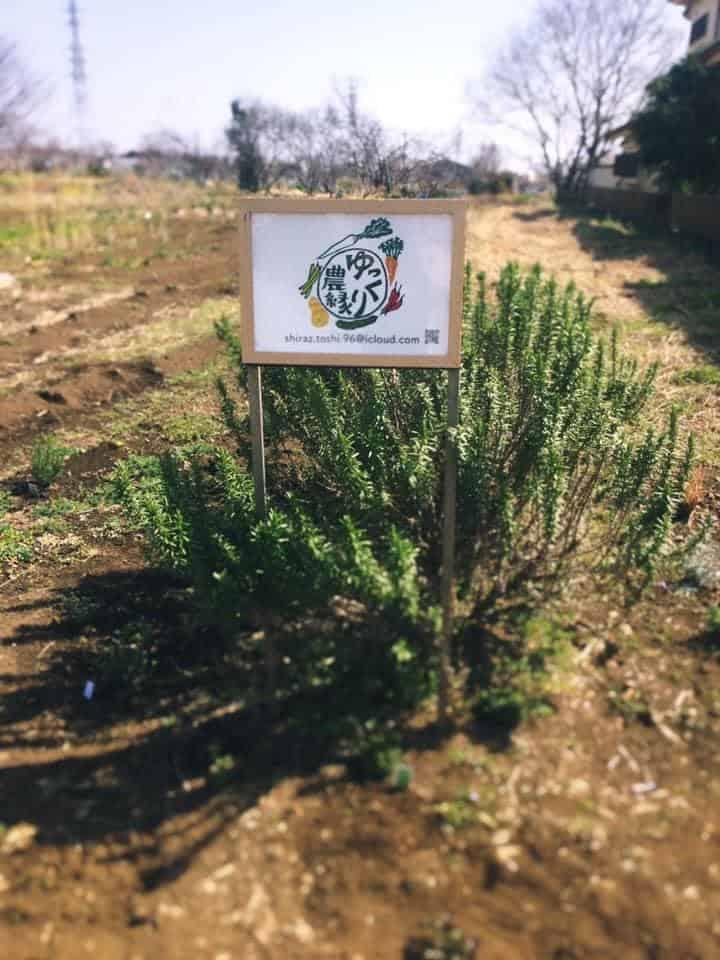 石川敏之 自然栽培 ゆっくり農縁